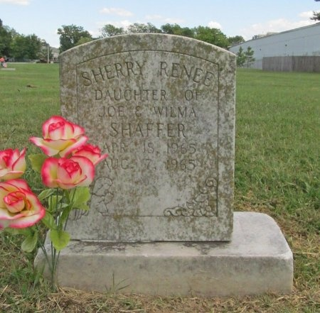 SHAFFER, SHERRY RENEE - Benton County, Arkansas   SHERRY RENEE SHAFFER - Arkansas Gravestone Photos