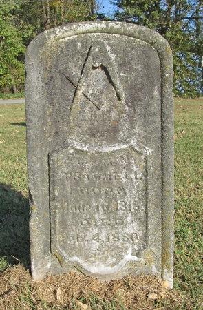 TRAMMELL, M M - Benton County, Arkansas | M M TRAMMELL - Arkansas Gravestone Photos