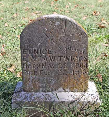 TWIGGS, EUNICE - Benton County, Arkansas | EUNICE TWIGGS - Arkansas Gravestone Photos