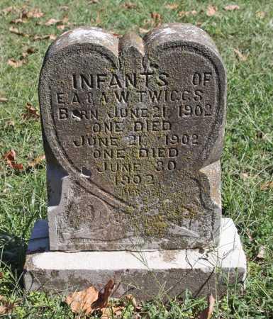 TWIGGS, INFANT TWINS - Benton County, Arkansas | INFANT TWINS TWIGGS - Arkansas Gravestone Photos