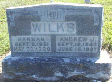 WILKS (VETERAN UNION), ANDREW JACKSON - Benton County, Arkansas | ANDREW JACKSON WILKS (VETERAN UNION) - Arkansas Gravestone Photos