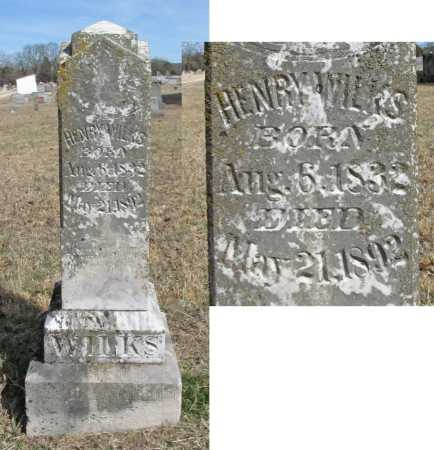 WILKS, HENRY - Benton County, Arkansas | HENRY WILKS - Arkansas Gravestone Photos