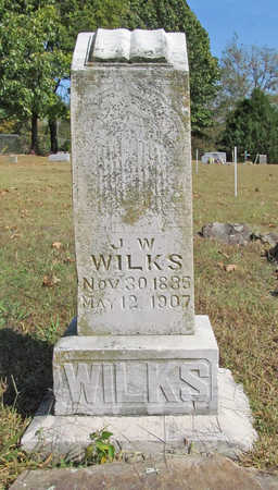 WILKS, J W - Benton County, Arkansas   J W WILKS - Arkansas Gravestone Photos