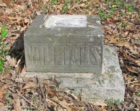 WILLIAMS, THELMA - Benton County, Arkansas | THELMA WILLIAMS - Arkansas Gravestone Photos