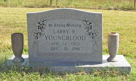 YOUNGBLOOD, LARRY R - Benton County, Arkansas | LARRY R YOUNGBLOOD - Arkansas Gravestone Photos
