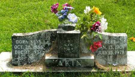 AKIN, DORA - Boone County, Arkansas   DORA AKIN - Arkansas Gravestone Photos