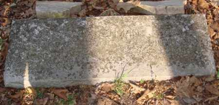 COKER BAUGHMAN, DINAH B - Boone County, Arkansas | DINAH B COKER BAUGHMAN - Arkansas Gravestone Photos