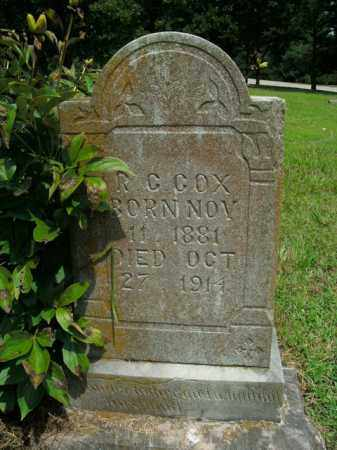 COX, RUFUS CALVIN - Boone County, Arkansas | RUFUS CALVIN COX - Arkansas Gravestone Photos