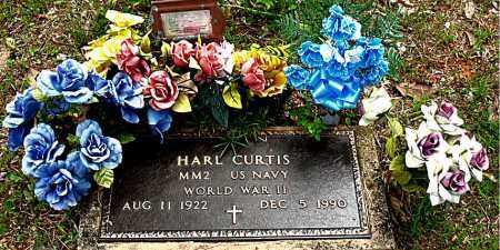 CURTIS  (VETERAN WWII), HARL - Boone County, Arkansas   HARL CURTIS  (VETERAN WWII) - Arkansas Gravestone Photos