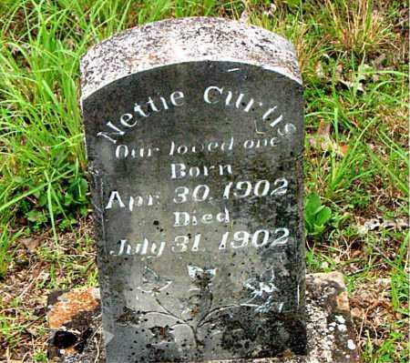 CURTIS, NETTIE - Boone County, Arkansas | NETTIE CURTIS - Arkansas Gravestone Photos