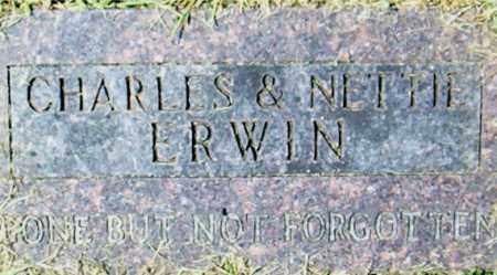 ERWIN, CHARLES - Boone County, Arkansas | CHARLES ERWIN - Arkansas Gravestone Photos