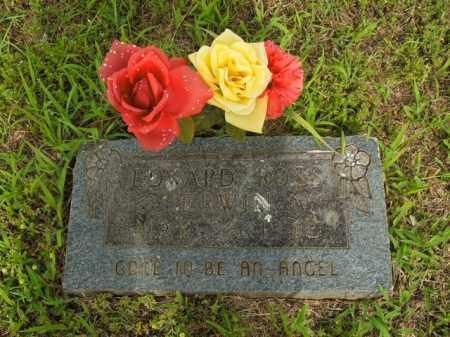 ERWIN, EDWARD ROSS - Boone County, Arkansas | EDWARD ROSS ERWIN - Arkansas Gravestone Photos