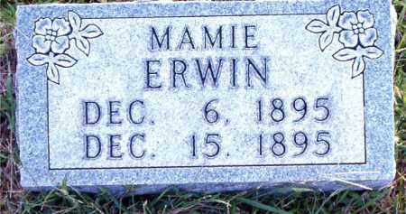 ERWIN, MAMIE - Boone County, Arkansas | MAMIE ERWIN - Arkansas Gravestone Photos
