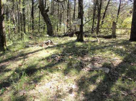 *FAIRVIEW/LANE OVERVIEW,  - Boone County, Arkansas    *FAIRVIEW/LANE OVERVIEW - Arkansas Gravestone Photos