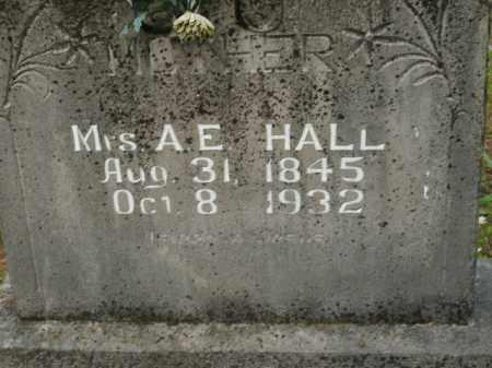 HALL, A.E. - Boone County, Arkansas | A.E. HALL - Arkansas Gravestone Photos