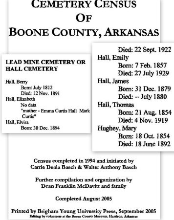 HALL, ELIZABETH - Boone County, Arkansas | ELIZABETH HALL - Arkansas Gravestone Photos