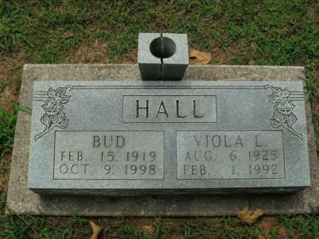 HALL, VIOLA L. - Boone County, Arkansas | VIOLA L. HALL - Arkansas Gravestone Photos