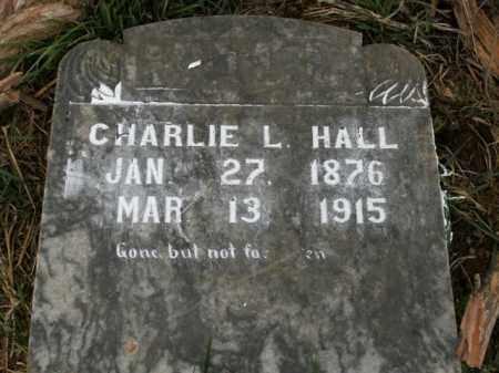 HALL, CHARLIE L. - Boone County, Arkansas   CHARLIE L. HALL - Arkansas Gravestone Photos