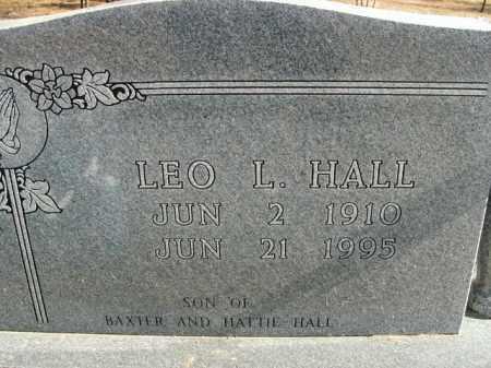 HALL, LEO L. - Boone County, Arkansas   LEO L. HALL - Arkansas Gravestone Photos