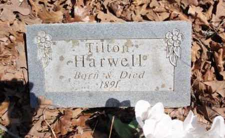 HARWELL, TILTON - Boone County, Arkansas | TILTON HARWELL - Arkansas Gravestone Photos