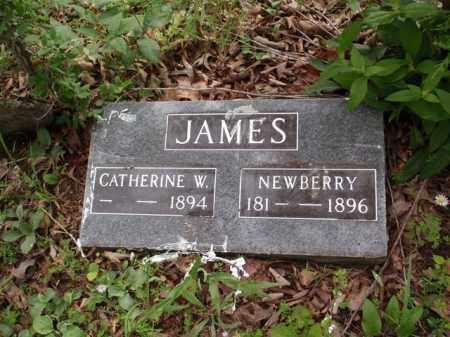 JAMES, CATHERINE W. - Boone County, Arkansas   CATHERINE W. JAMES - Arkansas Gravestone Photos