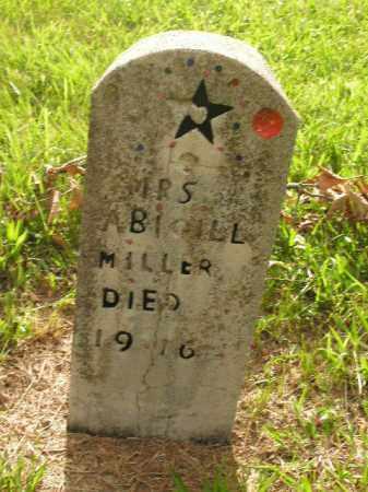 MILLER, ABIGILL - Boone County, Arkansas   ABIGILL MILLER - Arkansas Gravestone Photos