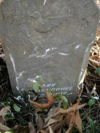 NEIGHBOURS, SARY - Boone County, Arkansas | SARY NEIGHBOURS - Arkansas Gravestone Photos