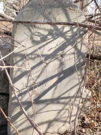 ROBERTS, LUCRETIA ANN - Boone County, Arkansas | LUCRETIA ANN ROBERTS - Arkansas Gravestone Photos