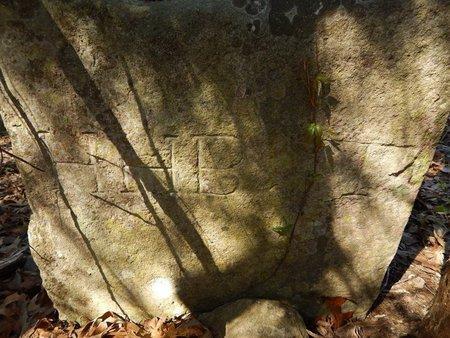 VANZANT, WASHINGTON M - Boone County, Arkansas | WASHINGTON M VANZANT - Arkansas Gravestone Photos