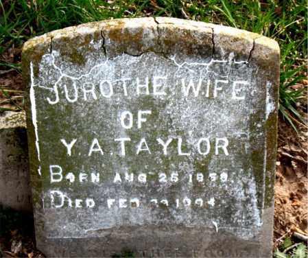 TAYLOR, JUROTHE - Boone County, Arkansas | JUROTHE TAYLOR - Arkansas Gravestone Photos
