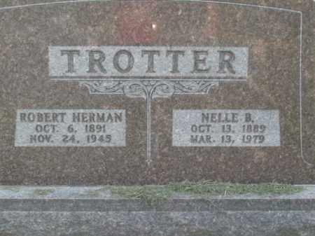 TROTTER, ROBERT HERMAN - Boone County, Arkansas | ROBERT HERMAN TROTTER - Arkansas Gravestone Photos