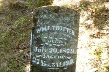TROTTER, WILLIAM F. - Boone County, Arkansas | WILLIAM F. TROTTER - Arkansas Gravestone Photos