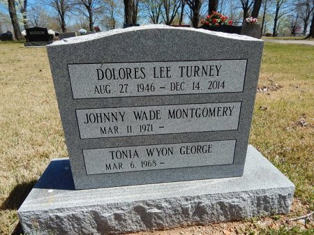 TURNEY, DOLORES LEE - Boone County, Arkansas | DOLORES LEE TURNEY - Arkansas Gravestone Photos