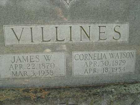 VILLINES, CORNELIA - Boone County, Arkansas | CORNELIA VILLINES - Arkansas Gravestone Photos