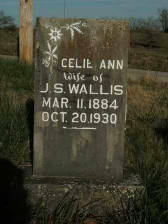 WALLIS, CELIE ANN - Boone County, Arkansas   CELIE ANN WALLIS - Arkansas Gravestone Photos