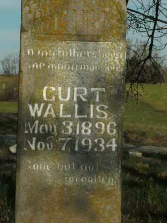 WALLIS, CURT - Boone County, Arkansas   CURT WALLIS - Arkansas Gravestone Photos