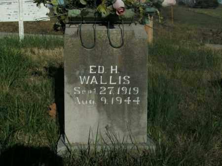 WALLIS, ED H. - Boone County, Arkansas   ED H. WALLIS - Arkansas Gravestone Photos