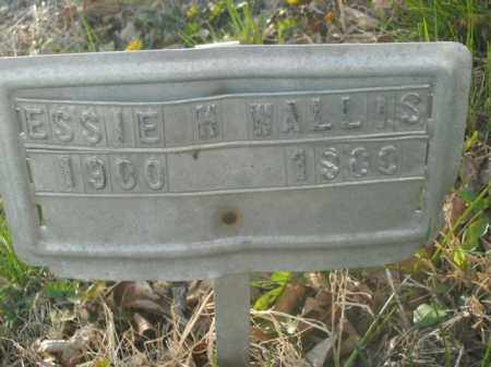 WALLIS, ESSIE H. - Boone County, Arkansas   ESSIE H. WALLIS - Arkansas Gravestone Photos