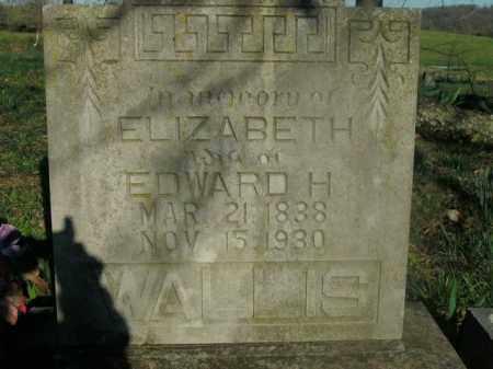 WALLIS, ELIZABETH MARY - Boone County, Arkansas | ELIZABETH MARY WALLIS - Arkansas Gravestone Photos