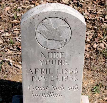 YOUNG, MIKE (DUTCH) - Boone County, Arkansas | MIKE (DUTCH) YOUNG - Arkansas Gravestone Photos