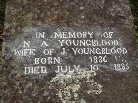 YOUNGBLOOD, N. A. - Boone County, Arkansas | N. A. YOUNGBLOOD - Arkansas Gravestone Photos