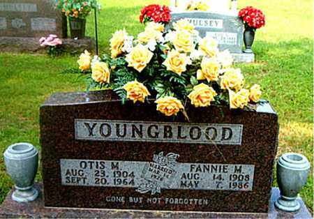 YOUNGBLOOD, FANNIE  M. - Boone County, Arkansas   FANNIE  M. YOUNGBLOOD - Arkansas Gravestone Photos
