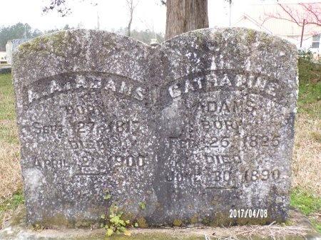 ADAMS, CATHARINE - Bradley County, Arkansas | CATHARINE ADAMS - Arkansas Gravestone Photos