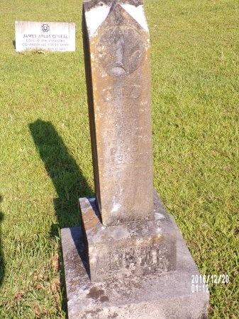 ADAMS, ANNA - Bradley County, Arkansas   ANNA ADAMS - Arkansas Gravestone Photos