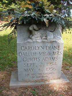 ADAMS, CAROLYN DIANE - Bradley County, Arkansas | CAROLYN DIANE ADAMS - Arkansas Gravestone Photos