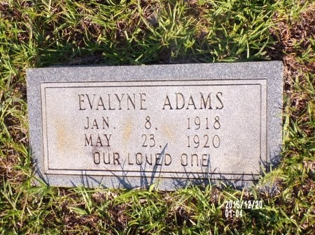 ADAMS, EVALYNE - Bradley County, Arkansas | EVALYNE ADAMS - Arkansas Gravestone Photos