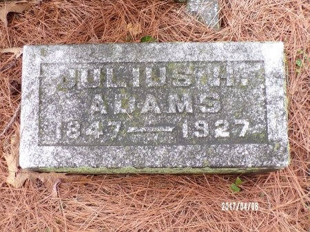 ADAMS, JULIUS HENRY - Bradley County, Arkansas | JULIUS HENRY ADAMS - Arkansas Gravestone Photos
