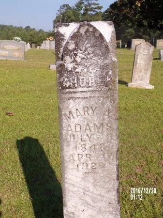 ADAMS, MARY ANN - Bradley County, Arkansas | MARY ANN ADAMS - Arkansas Gravestone Photos
