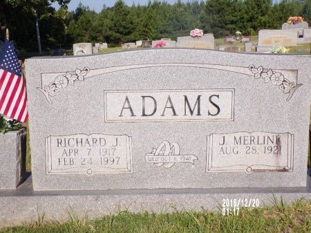 ADAMS, RICHARD J - Bradley County, Arkansas   RICHARD J ADAMS - Arkansas Gravestone Photos