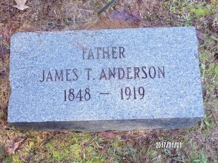 ANDERSON, JAMES T - Bradley County, Arkansas | JAMES T ANDERSON - Arkansas Gravestone Photos